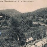 Сочи. Имение Михайловское М.А. Зензиновой, до 1917 год