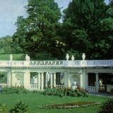 "Вход в парк ""Дендрарий"", 1978 год"