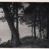 Геленджик. Парк на берегу Черного моря при доме отдыха 1 мая, 1935 год