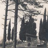 Туапсе. 1925-1929 годы. Издатель неизвестен