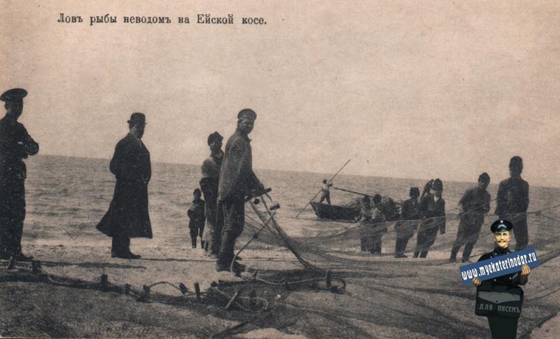 Ейск. Ловля рыбы неводом на Ейской косе, до 1917 года