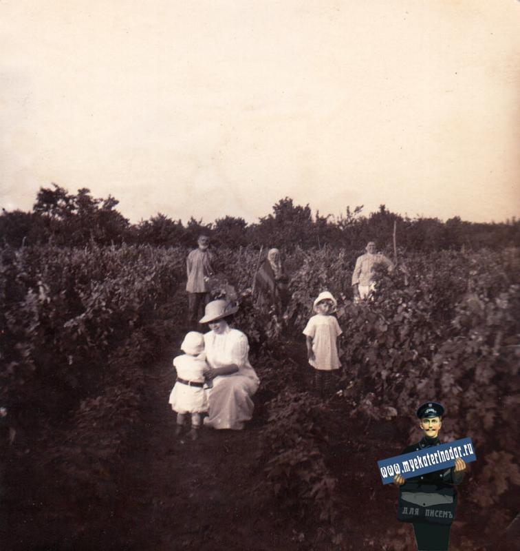 Ейск. Мещанские сады. Сад Боровец, около 1914 года