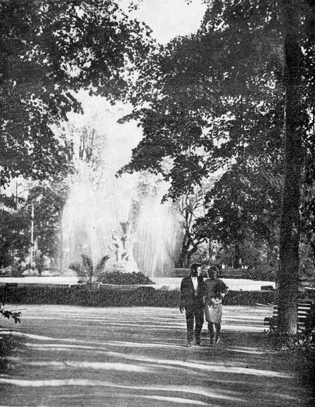 Краснодар. Аллея городского парка им. Горького, 1968 год.