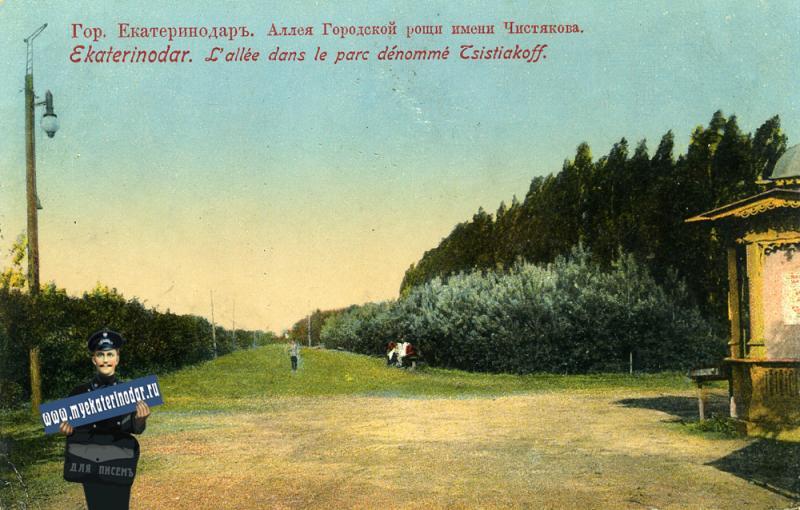 Екатеринодар. Аллея Городской рощи имени Чистякова