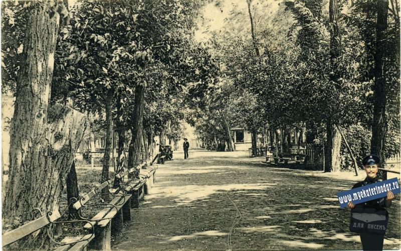 Екатеринодар. Аллея в Городском саду, до 1917 года