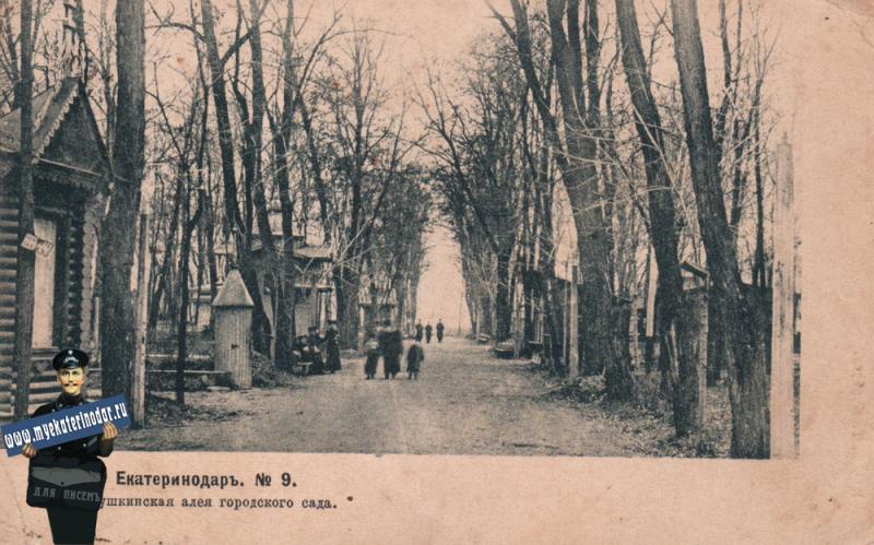 Екатеринодар. №9. Аллея в Городском саду, 1904 год