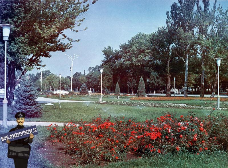 Краснодар. Цветы на улице Тельмана, 1978 год.