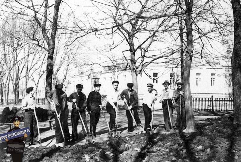 Краснодар. Работы на бульваре, начало 1950-х