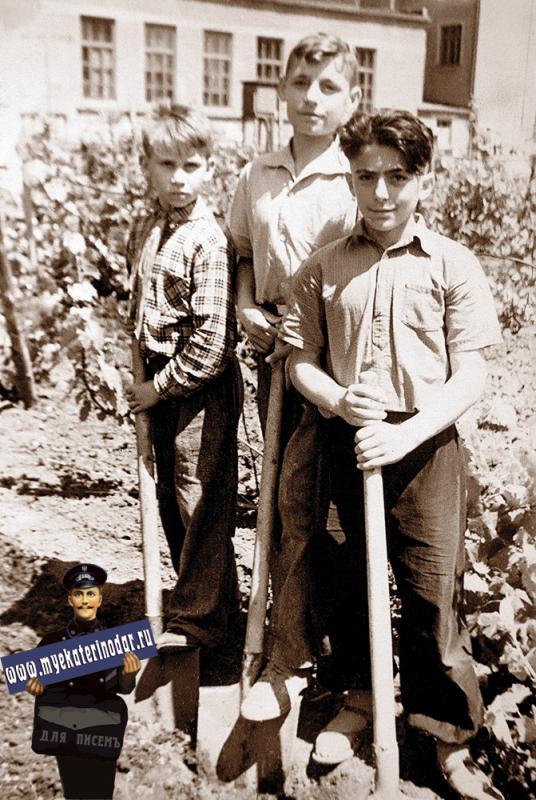 Краснодар. СШ №30. Работы в саду, 1962 год