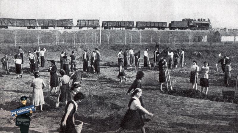 Краснодар. Студенты Мединститута на уборке территории Горпарка, 1951 год