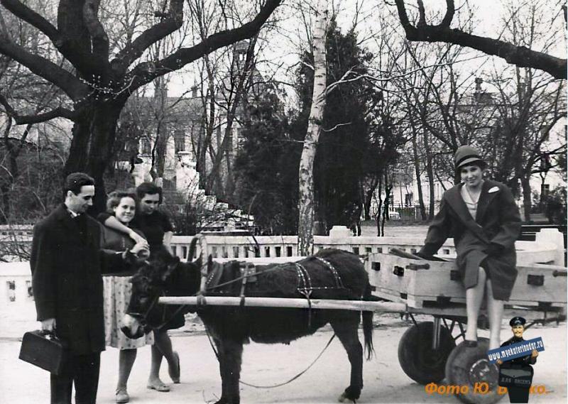 Краснодар. В парке М. Горького, 1960-е