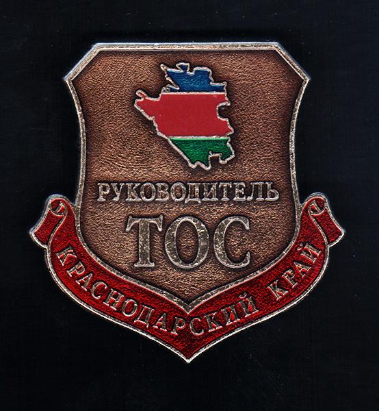 Краснодарский край. Руководитель ТОС, 2000-е