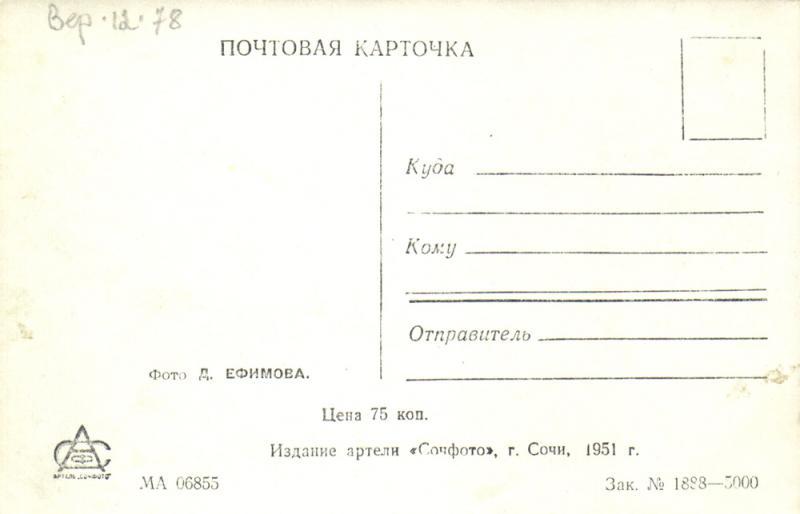 """Адресная сторона. Сочи. 1951 год. Издание артели """"Сочфото"""""""