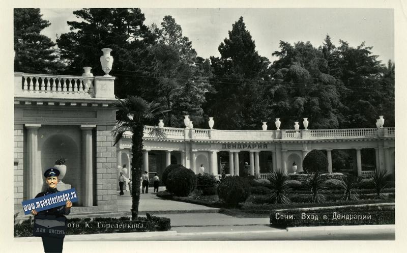 Сочи. Вход в Дендрарий, 1954 год